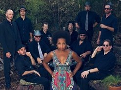 Image for Akina Adderley & the Vintage Playboys