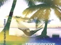Image for TROPIGROOVE
