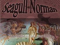 Seagull Norman