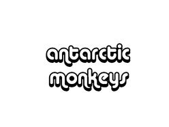 Image for The Antarctic Monkeys