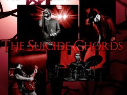Image for The Suicide Chords