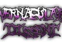 Vernacular Dissent