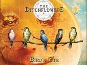 The Ditchflowers