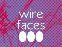 Image for Wire Faces