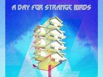 A Day For Strange Birds