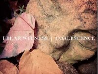 Image for I Bear Witness