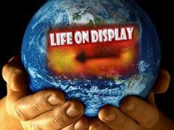 Image for Life On Display