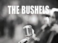 Image for THE BUSHELS
