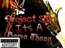 project slimm