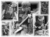 18 Rabbit