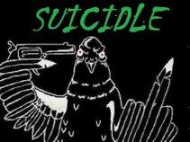 Suicidle Pigeons