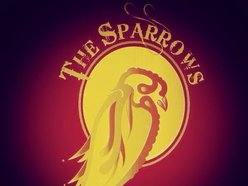 Image for The Sparrows