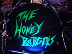 Image for The Honey Badgers