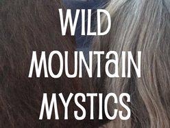 Image for Wild Mountain Mystics
