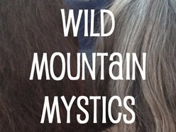 Image for Wild Mountain Mystics