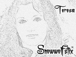 Image for Teresa Reeves-Gilmer of Snowwolfstix