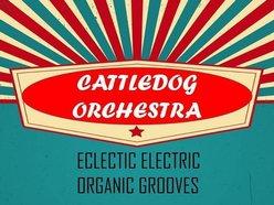 Image for Cattledog Orchestra