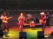 Michael Thomason Band