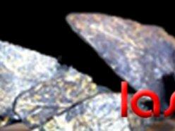 Image for Lascivious Rex
