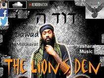 Dawad X