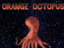 orange octopuss