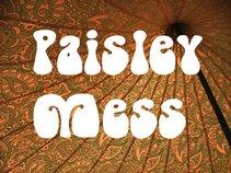 Paisley Mess