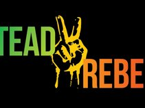 The Steady Rebels