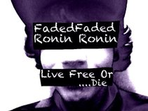 Faded Ronin
