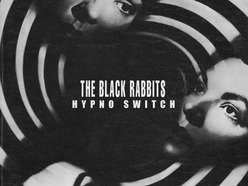 Image for The Black Rabbits