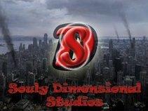 Souly Dimensional Studios