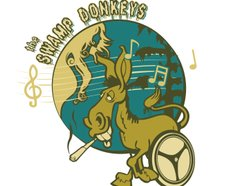 Image for The Swamp Donkeys