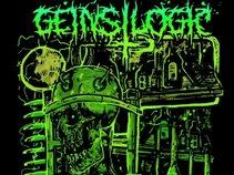 Gein's Logic