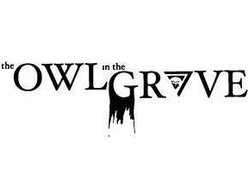 Image for The Owl In The Grove