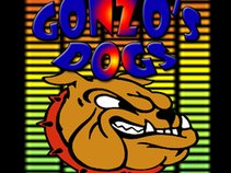 Gonzo's Dogs