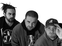 Image for Funkoars