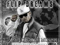 Flip Dreams