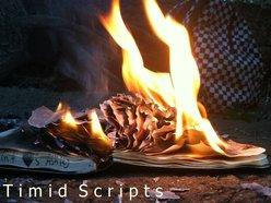 Timid Scripts