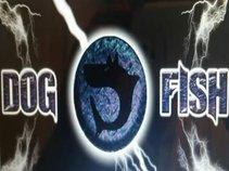 Dogfish Band