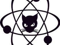 The Positronic Cats