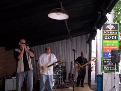 Image for The Alligators Blues Band