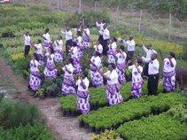 IFC Choir