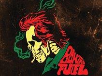 Bonze's Fuel