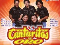 CANTARITOS DE ORO