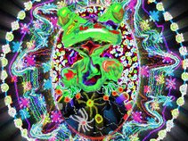 The  Kozmic Frogs