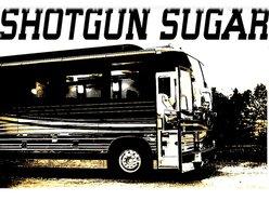 Image for SHOTGUN SUGAR