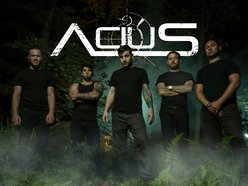 Image for Acius