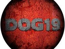 Dog19