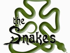 Image for The Snakes