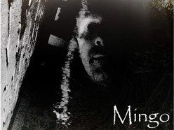 Image for Mingo