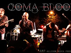 Image for Coma Bloom